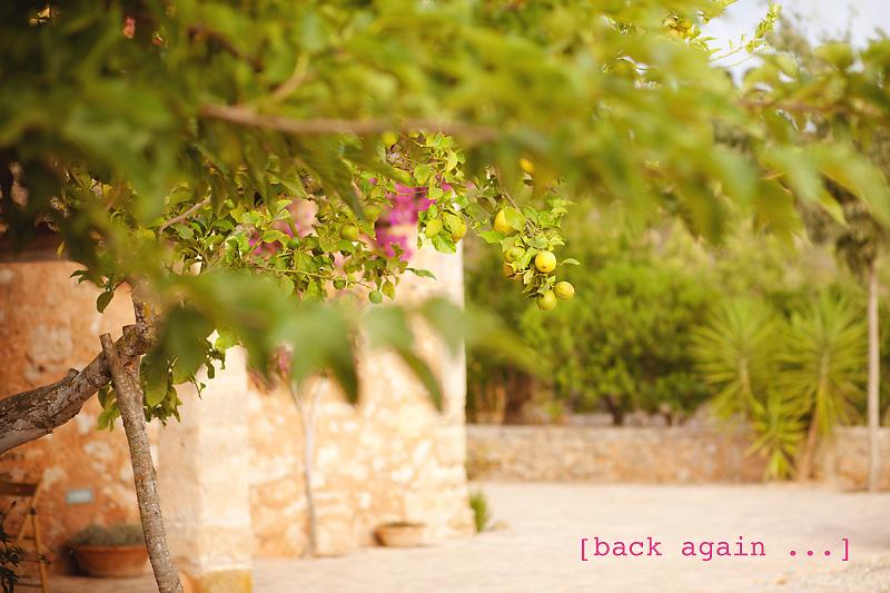 Wieder zurück …