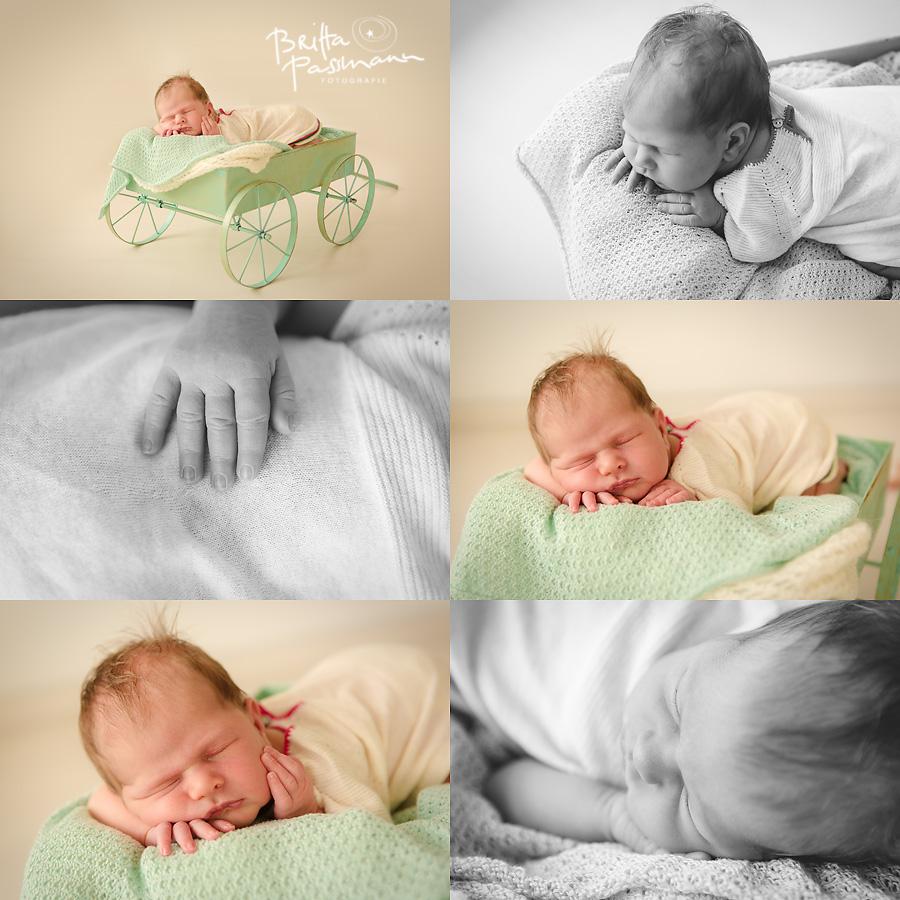 Fotos von Babys in Dortmund 3