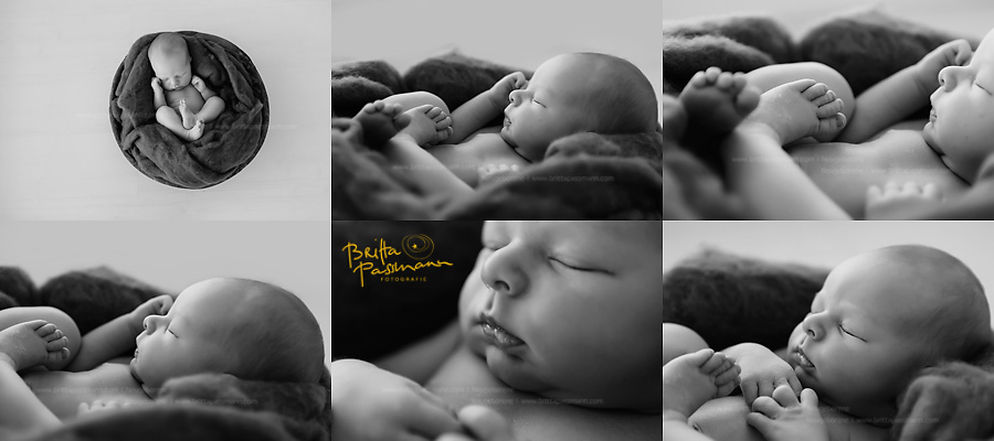Neugeborenenfotos Bochum Fotostudio Dortmund Oespel