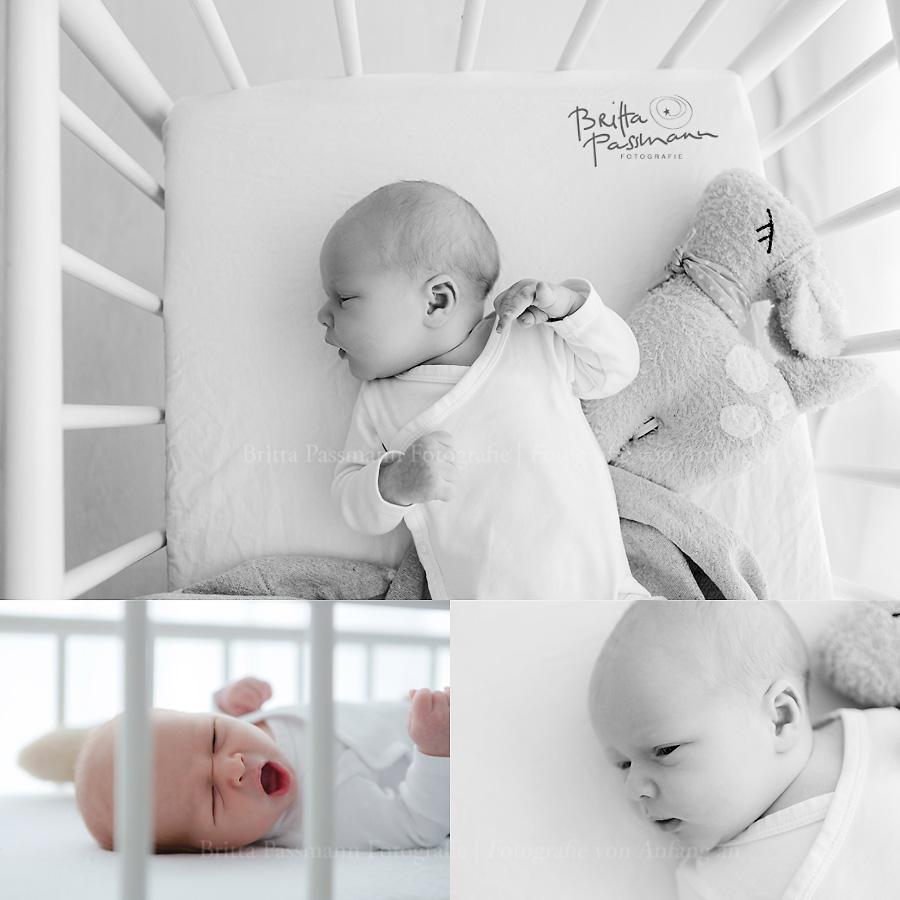 authentische-Neugeborenenfotos-Dortmund-Bochum-NRW-Neuegborenenshooting-Fotostudio-Fotograf-Babyfotos