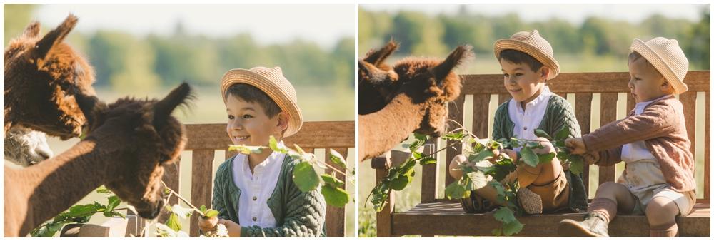 Britta-Passmann-Fotografie-Dortmund-Fotoshooting_mit_Alpakas_Borken-Alpakafarm-Familienfotos-Kinderfotos-Fotoshooting